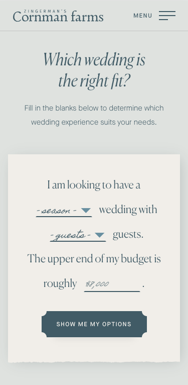 Screenshot of wedding filter